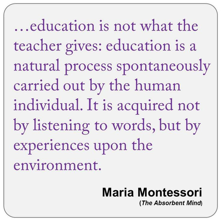 ideal montessori teacher The montessori teacher, child, and environment may be seen as a learning triangle, with each element inextricably linked, and a vital part of the whole.