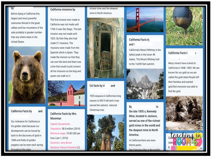 Using a Padlet to do a class fact gathering