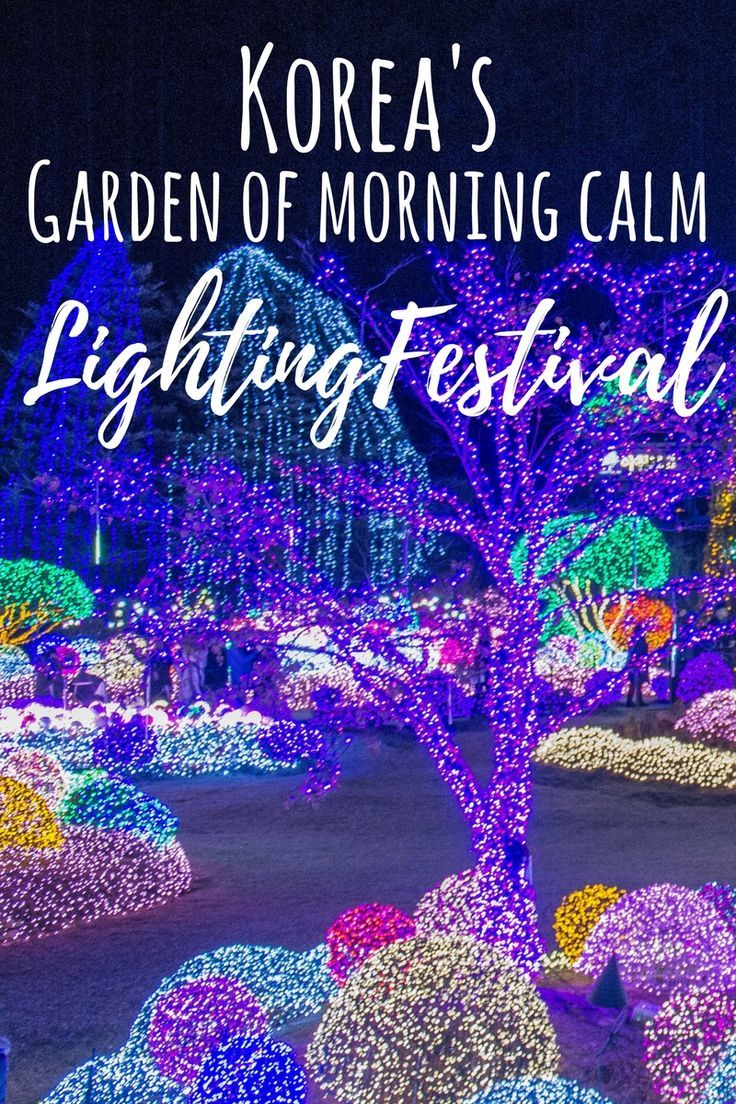 The Garden of Morning Calm is a vast botanical garden that holds the biggest lighting festival in Korea. During the Winter months, the garden is decorated with over 30,000 lights.