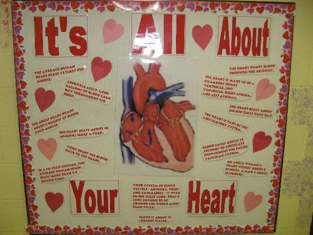 "Integrate science and the theme of Valentine's Day together and study about the heart during February.  ""It's All About Your Heart"" is a great idea for a heart related Valentine's bulletin board display."
