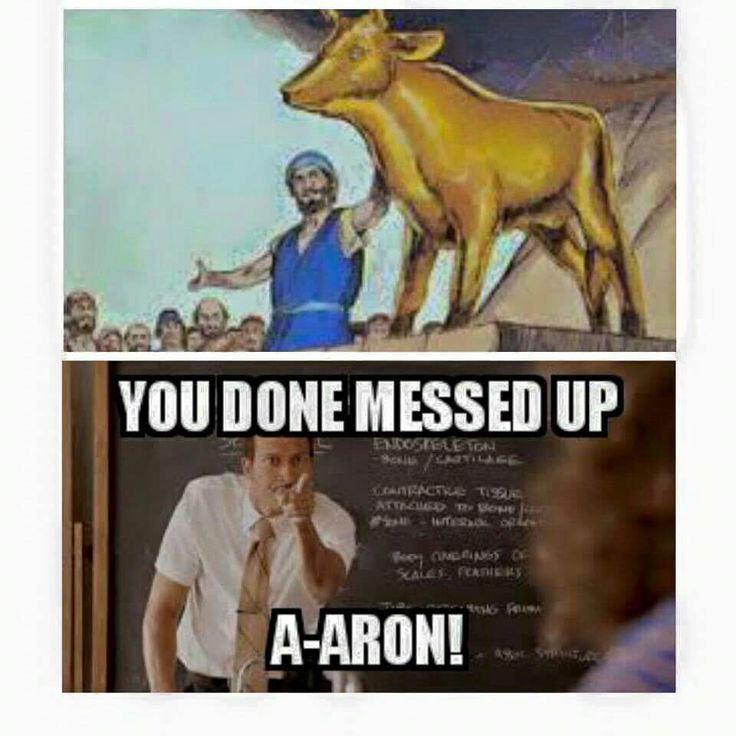 Hahahahaha I dying!