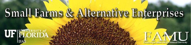 Small Farms & Alternative Enterprises- organic farming how-to.