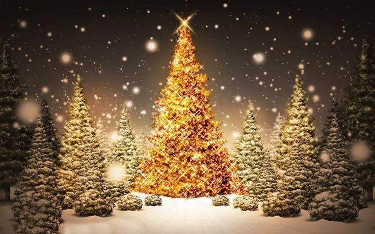 Agliè e il mercatino di Natale sotto i portici Il Cap Associazione Commercianti Produttori e Artigiani di Agliè organizza il Mercatino di Natale sotto i portici alladiesi. Potrete passeggiare tra bancarelle colme di idee regalo e leccornie di ogni tipo. Nel pomeriggio ci sarà una gradita sorpresa per i più piccoli!Vi aspettiamo numerosi!!!! Domenica 1 dicembre 2013 dalle ore 10:00 alle 18:00  SIETE TUTTI INVITATI AD AGLIE'!!!!!!!!!!!!!!!!!!!!!!!!!!!!
