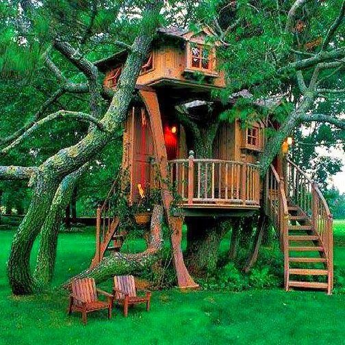 893 best unbelievable tree houses images on pinterest