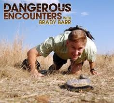 Brady Barr is back and ready to face his toughest challenges yet in this thrilling new season of Dangerous Encounters. Watch here http://www.idubba.com/tv-serials/dangerous-encounters-national-geographic/723