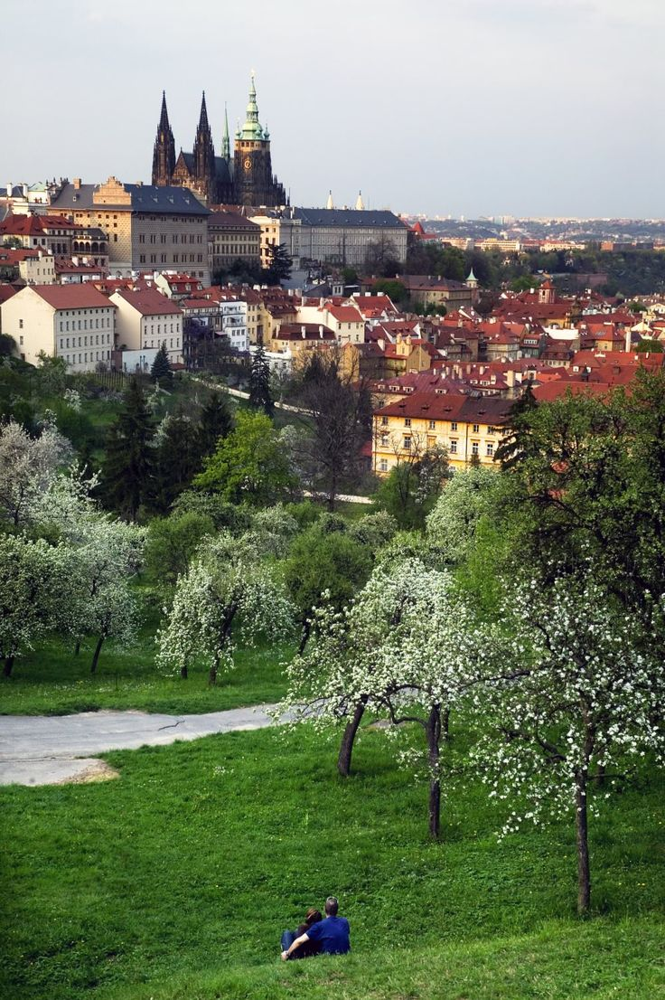 St Vitus Cathedral and castle area with couple cuddling in park in foreground. Prague!