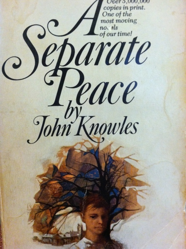 a separate peace coming of age essay Get some tips on how to write an award-winning peace essay  students are  usually asked to write a separate peace essay or a private peaceful essay to  show.
