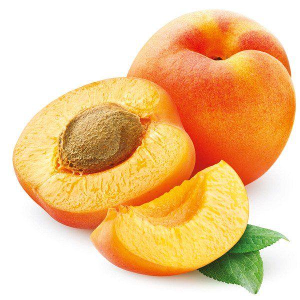 Morela - Prunus armeniaca 'Harcot'