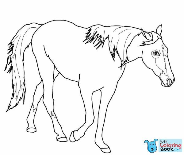 Tennessee Walking Horse Coloring Page Free Printable Coloring Pages For Free Printable Tennessee Walking Horse Coloring Pages