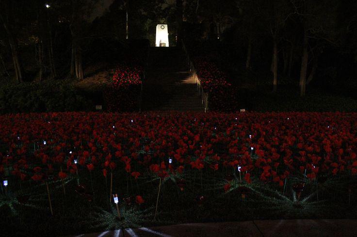 Poppy project at night, April 2015 | Flickr - Photo Sharing!