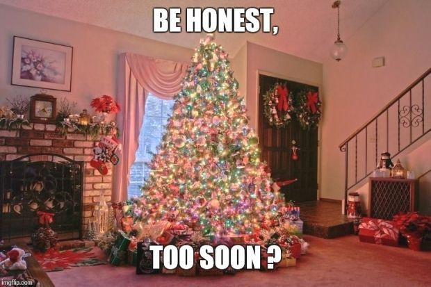 33 Memes About Being Too Soon For Christmas Decorations And Music 33 Memes About Bein In 2020 Big Christmas Tree Beautiful Christmas Trees Pretty Christmas Trees