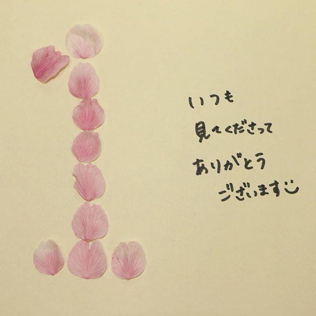 【atami_official】さんのInstagramをピンしています。 《1歳のお誕生日、ありがとう。  #熱海 #桜 #あたみ桜 #インスタ1周年 #atami #cherryblossom #anniversary 今日は#インスタを始めて1周年 #今流行りの #おむつアート ならぬ #花びらアート に #たくさんの #ありがとう を込めて》