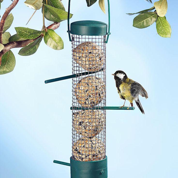 Krmítko pro ptáky | Magnet 3Pagen #magnet3pagencz #3pagen #animals