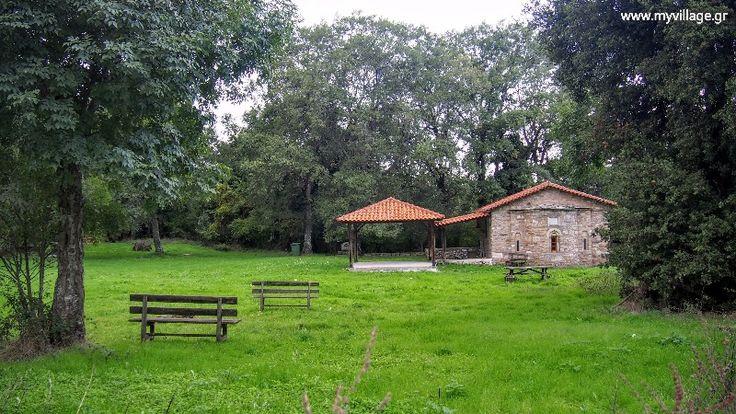 Δάσος Πολυδενδρίου Είναι ένα από τα ποιο οργανωμένα δάση της Ελλάδας με σηματοδοτημένα μονοπάτια, ποδηλατόδρομους, χώρους πικ νικ και μεγάλη ποικιλία χλωρίδας και πανίδας. Οι ήπιες γενικός κλήσεις του εδάφους προσφέρονται για πεζοπορία αναψυχής, χαλάρωσης, αναζωογόνησης και εξερεύνησης, σε ένα φιλικό περιβάλλον για τον επισκέπτη.