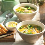 Continental Chicken Vegetable Soup