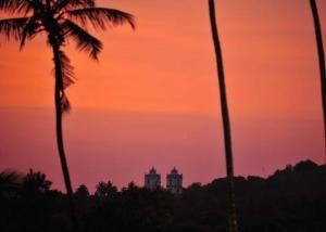 EAT.PRAY.MOVE Yoga India Form + Focus Retreat in Nerul Goa, India