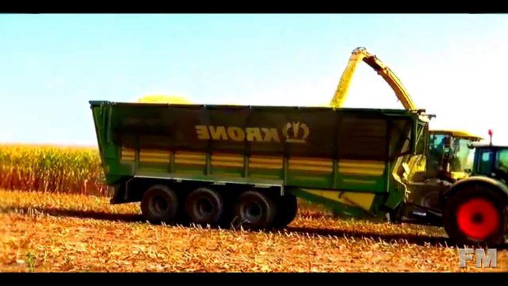 corn harvest in Belgium 2016. !FM!.