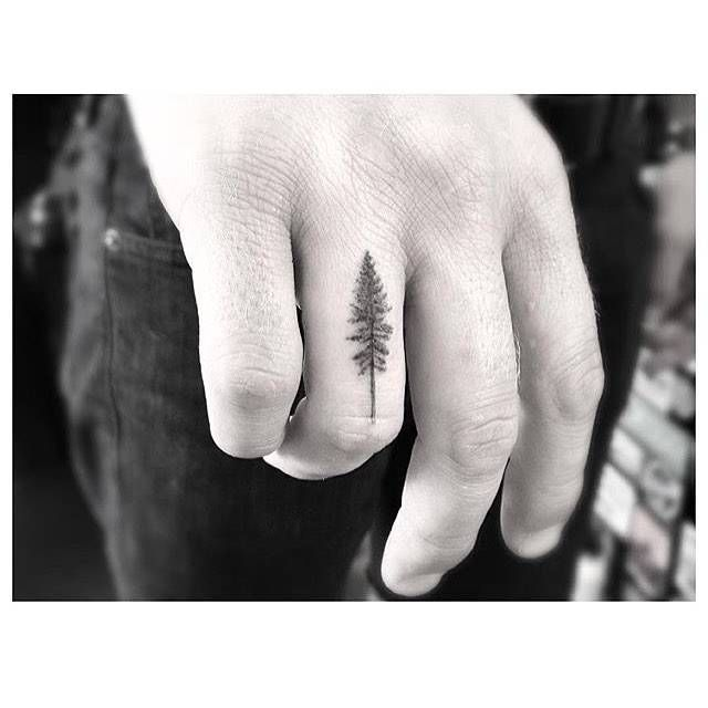 Fine line style pine tree tattoo on the right ring finger.