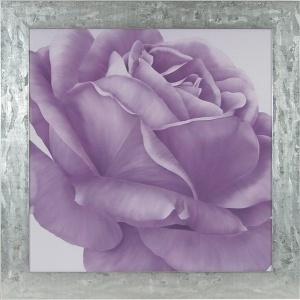 Flor malva