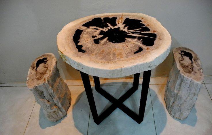 IndoGemstone Petrified Wood, Petrified Wood Stools, Solid Wood Table, Natural Edge Tables, Live Edge Lumber, Live Edge Timber, Home Decor, Stone Tiles.