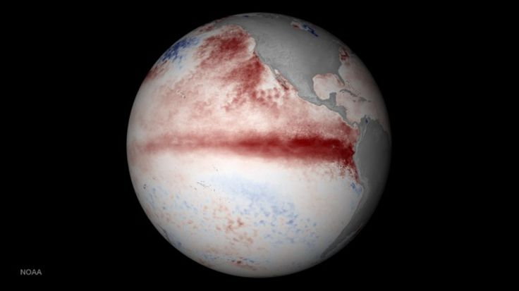 "LOS ANGELES - Climatologists are predicting that this winter will be unusual across the country because of El Niño that is brewing in the Pacific Ocean. ""There's no longer a possibility that El Niñ..."