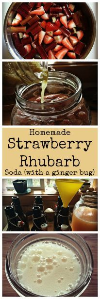 Strawberry Rhubarb Soda with a Ginger Bug~ Easy homemade natural soda ...