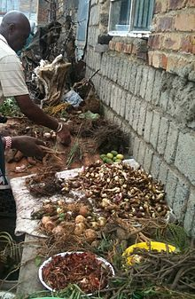 Traditional healers of South Africa - Wikipedia, the free encyclopedia