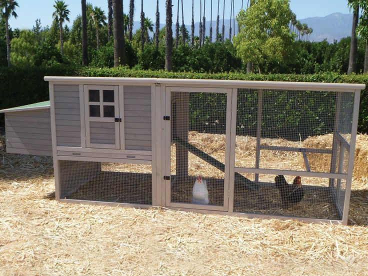 Chicken House Farm 143 best diy: hen house & chicken coop designs! images on