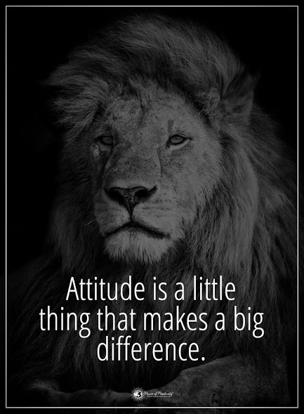 Attitude is a little thing that makes a big difference. #powerofpositivity #positivewords #positivethinking #inspirationalquote #motivationalquotes #quotes #life #love #hope #faith #respect #difference #attitude #personality #characteristic