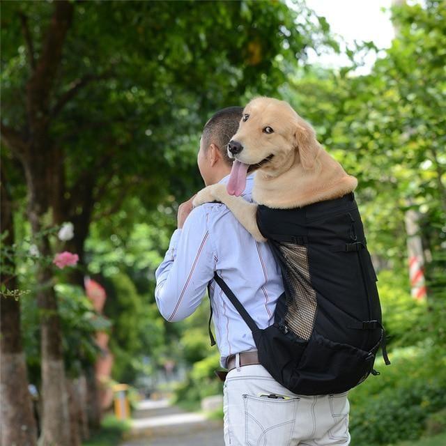 Owen S Luxury Backpack Dog Backpack Carrier Dog Carrier Bag Dog Backpack