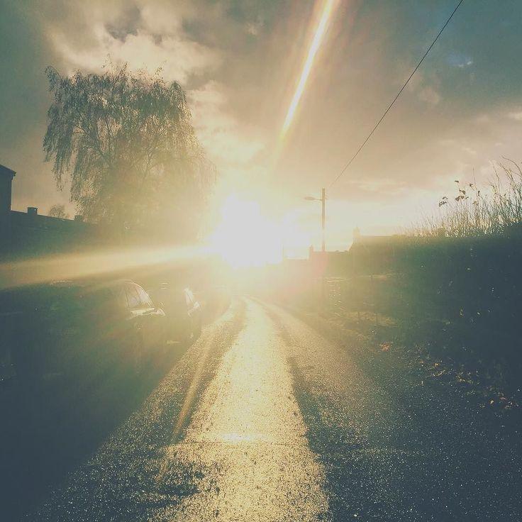 Loving the low lights this time of year. #lowsunlight #finaldaysofautumn #oslolights #lilloyunncreativestudio