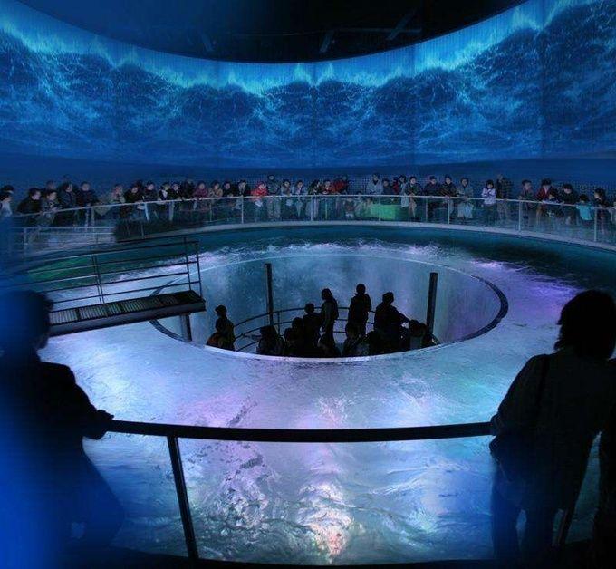 水族館がデートを演出!この夏注目の大人気「アクアリウム」10選 | RETRIP