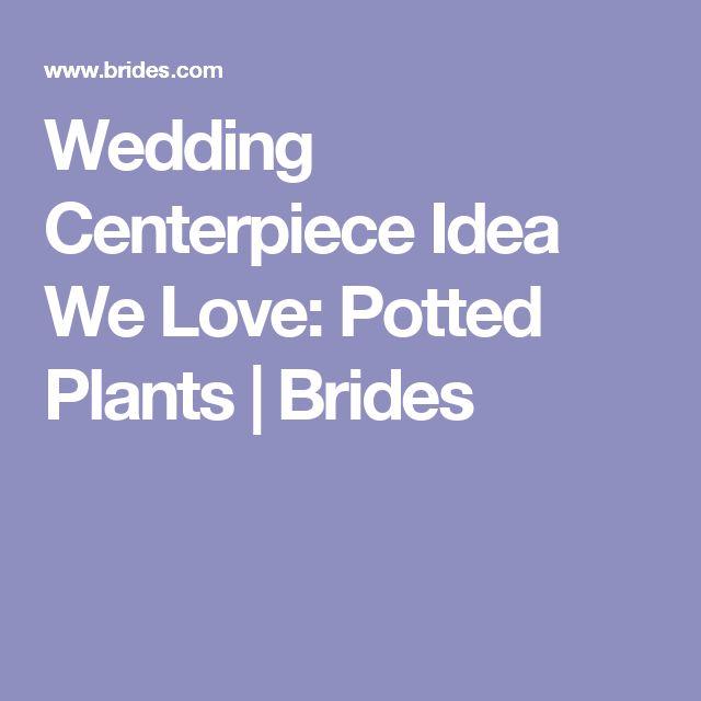 Wedding Centerpiece Idea We Love: Potted Plants | Brides