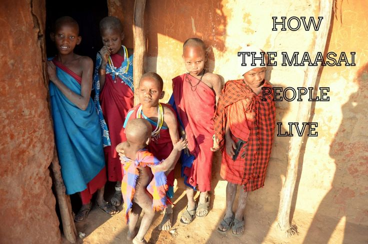 Are you wondering how the indigenous peoples of Maasai live? Do you want to learn how many wives has chief of one small village and how many kilometres the mother has to walk every day to get water? Did you know that 500 cows still means the family is poor?  #maasai #tanzania #travelblogger #nomadicsoul #africa #indigenouspeoples #blogger #travelwriter #tribes #traditionaltribes #arusha #daressaalam #kiteto #ngo #minorityrights #mensikova