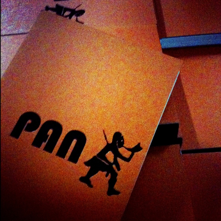 Lanzamiento libro PAN