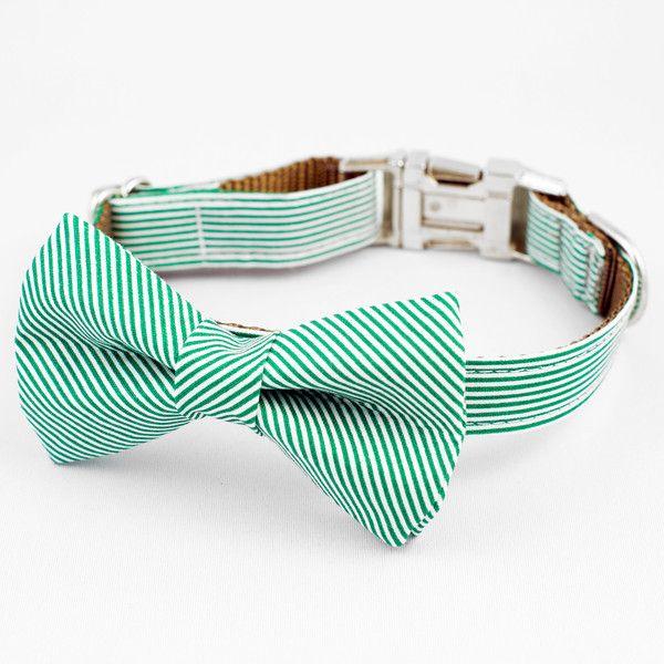 The Moss Collar