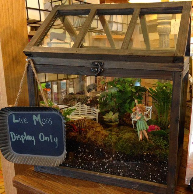 Actividades con ni os jardines en miniatura gardens for Jardines en miniatura