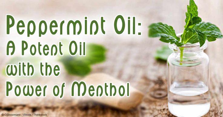 Best 25 Peppermint Oil Benefits Ideas On Pinterest
