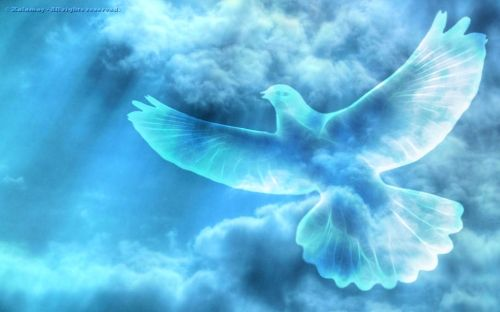 peace on earth free wallpaper | 25 Great Peace Backgrounds | CreativeFan