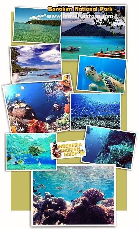 PAKET WISATA INDONESIA | TOUR WISATA MURAH | JELAJAH NUSANTARA | TRAVEL SENTOSA EXPRESS: Kecantikan Bunaken - Sulawesi Utara
