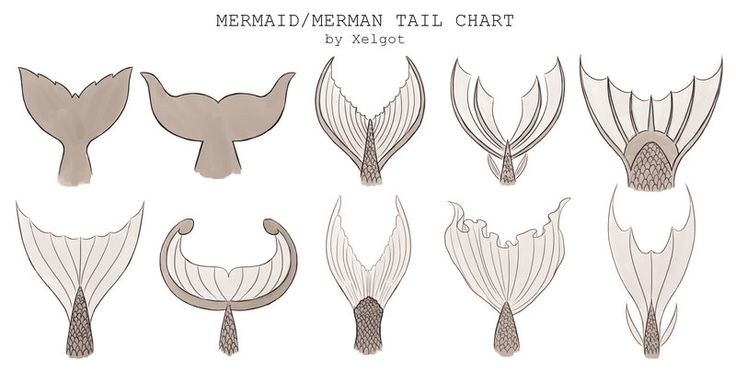 """Mermaid/Merman Tail chart by Xelgot This chart was commissioned to use for reference. It might be help for others too. """
