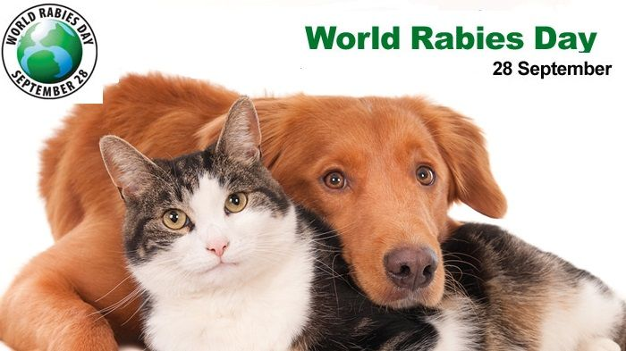 World Rabies Day 2017 is Today, don't forget to make sure pets are safe #WorldRabliesDay