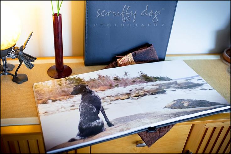 beautiful photo albums (source: scruffy dog photography): Beautiful Photo, Pet Photography, Photo Albums, Dog Lovers, Scruffy Dog, Dog Photography, Albums Source, Photography Ideas