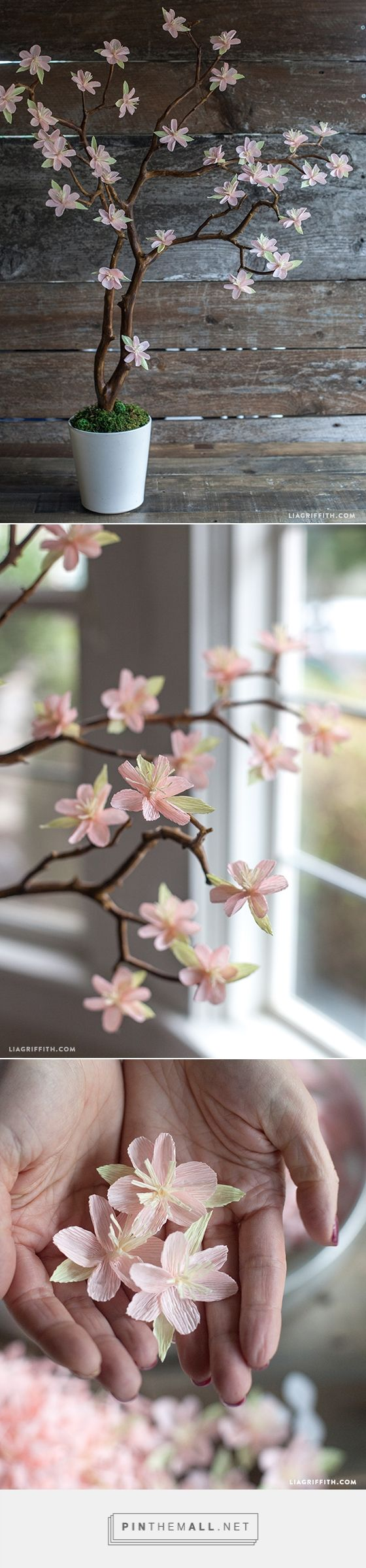 Crepe Paper Cherry Blossom Branches - Lia Griffith