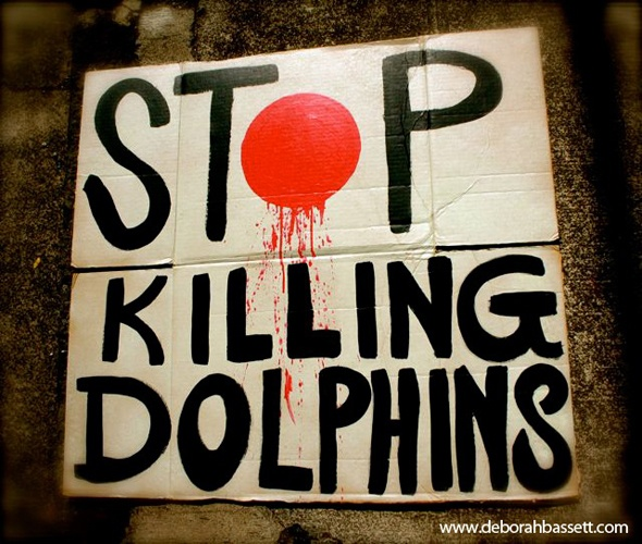 """Those that aren't slaughtered are picked over and confiscated to be """"performers"""" in resorts as part of dolphin swims and used in places like Sea World. Mothers killed, babies stolen.   September 1st 2012, the massive slaughter of dolphins resumes in Taji Japan. 8'("""