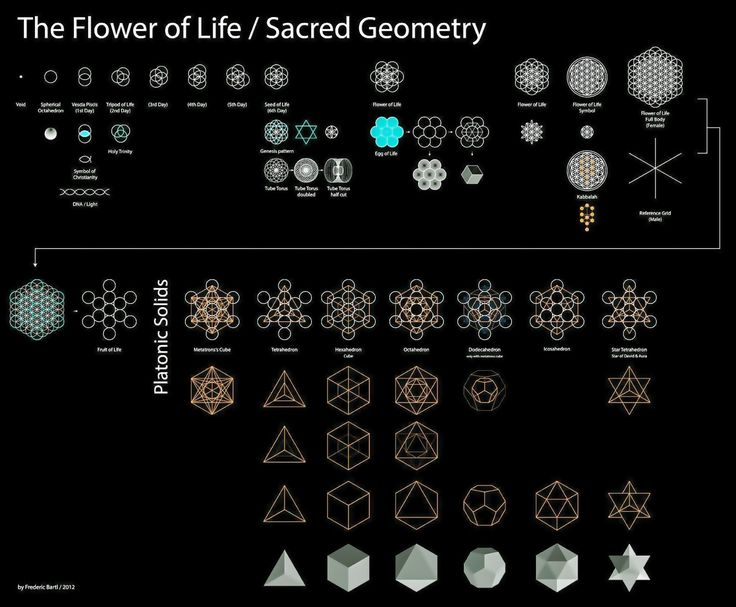 The Flower of Life - Sacred Geometry                                                                                                                                                                                 More