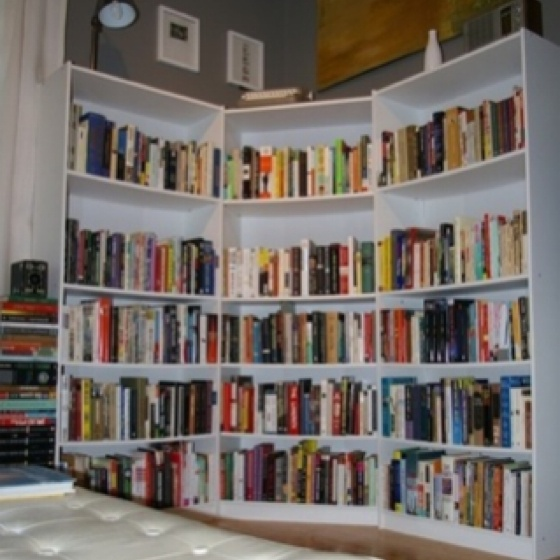 I could totally do this with cheap bookshelves from walmart.