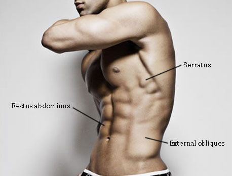 The Upper Abs Trifecta not only builds a washboard stomach and ripped upper abs, but it builds a well-defined serratus and obliques.