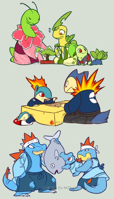 2nd Gen pokemon starters <3