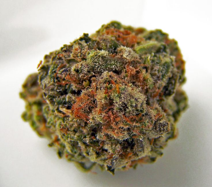 "Mango Trainwreck Strain Review The taste of the Trainwreck combines well with its Mango counterpart, with the fruitiness of the Mango getting an extra lift from the pungence of the Trainwreck strain. A good appetite stimulant, Mango Trainwreck has effects that are both physically relaxing and mentally happy and uplifting. [button type=""link"" link=""http://www.bitcoinseedstore.com"" variation=""btn-danger"" block=""btn-block"" target=""blank""]Buy Cannabis Seeds[/button] http://www.marijuanasee"
